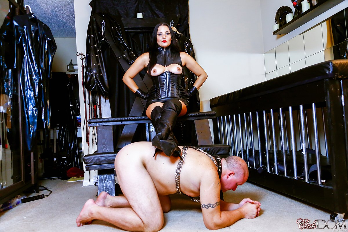 female-domination-gear