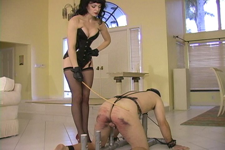 Dominatrix whip severe caning