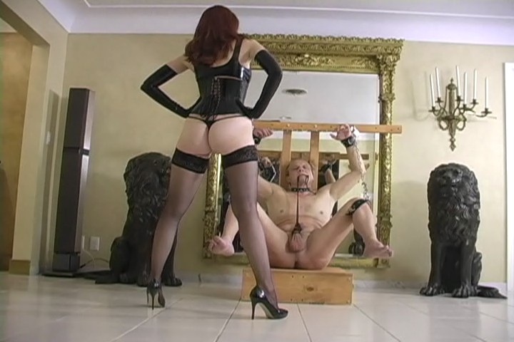 Femdom sessions ball stretching, sexwomen for house wife in nsaked image